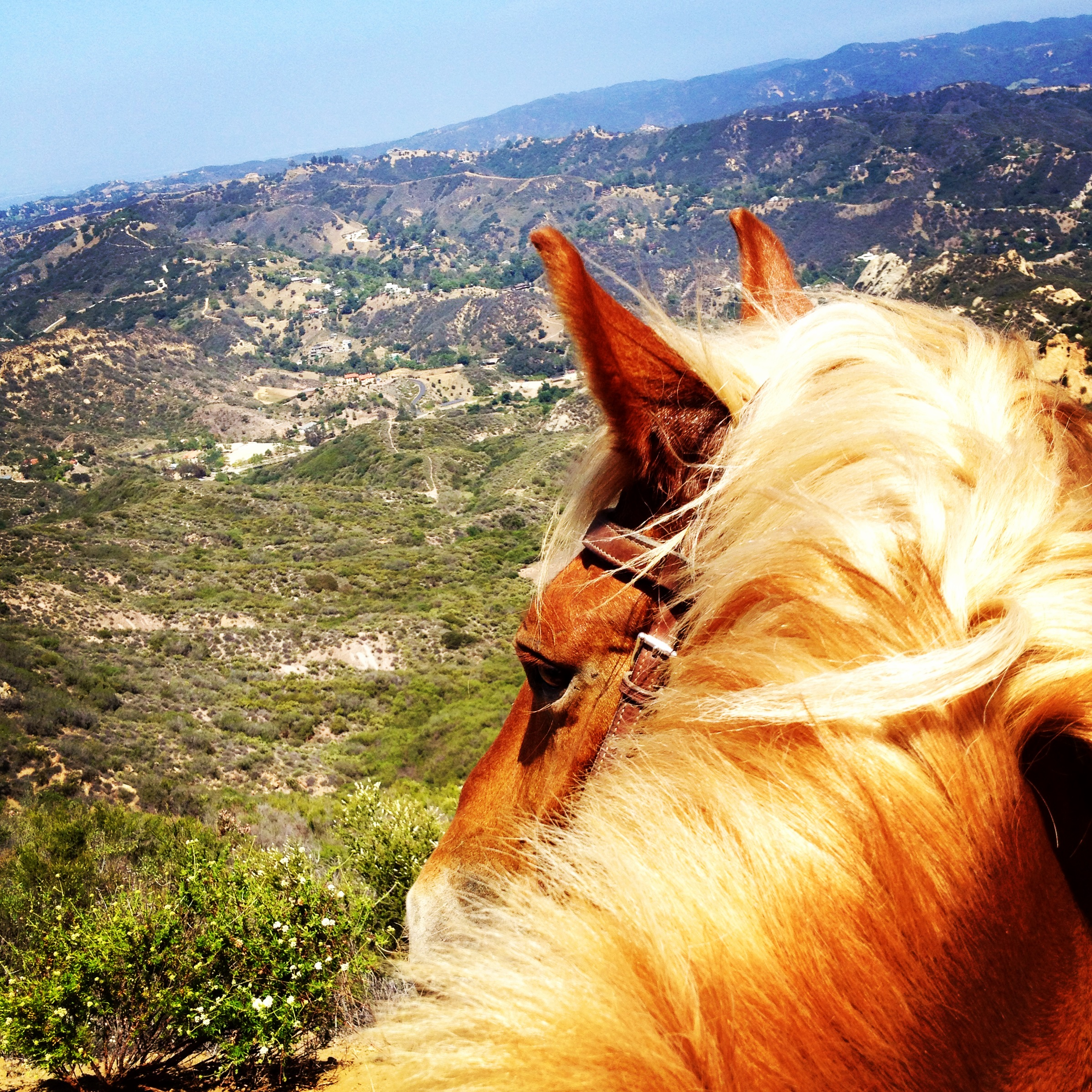 Voted The Most Beautiful Place To Trail Ride In Los Angeles By Magazine
